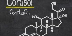 Kuidas mõjutab meid kortisool ehk stressihormoon?