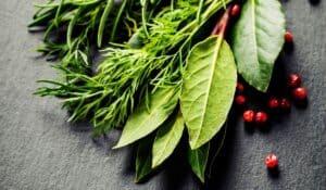 Parimad maitsetaimed, millel on tervisele võimas kasutegur